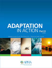 Adaptation in Action Part II