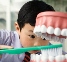 Boy brushing a model of teeth