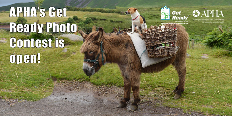 APHA's Get Ready Photo Contest is open! Dog on back of donkey